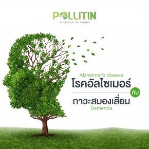 โรคอัลไซเมอร์ กับ ภาวะสมองเสื่อม